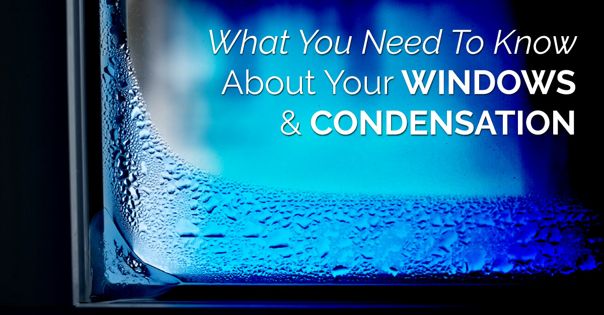What You Need To Know About Your Windows And Condensation